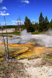 Minute Geyser Royalty Free Stock Photography