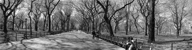 Minute lente de New York Photo libre de droits