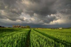 10 minutos na tempestade Fotografia de Stock Royalty Free