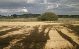 Minworth widok, Birmingham, Anglia Obrazy Royalty Free