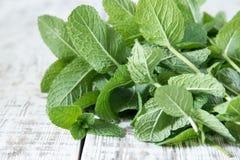 Minze Bündel des frischen grünen organischen tadellosen Blattes auf Holztisch Clo Stockfotos