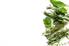 Minze, Salbei, Rosmarin, Thymian - Aromatherapieweißhintergrund stockfotografie