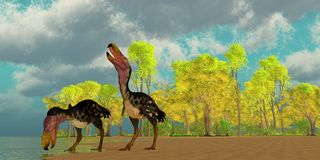 Miocene Kelenken Birds stock illustration