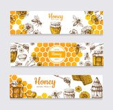 Miodowi sztandary Rocznik ręka rysująca pszczoła i wektorowe etykietki honeyed kwiatu, honeycomb i roju, ilustracji