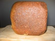 Miodowy Całej banatki chleb Zdjęcia Stock