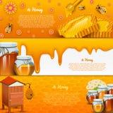 Miodowy lub naturalny produkt rolniczy beekeeping lub ogród Zdrowie, organicznie cukierki, medycyny ilustracja, rolnictwo Jedzeni ilustracji