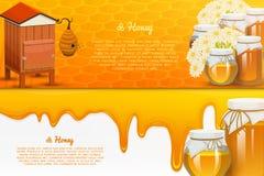 Miodowy lub naturalny produkt rolniczy beekeeping lub ogród Zdrowie, organicznie cukierki, medycyny ilustracja, rolnictwo Jedzeni ilustracja wektor