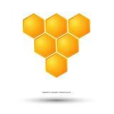 Miodowy pszczoła logo Fotografia Stock
