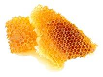 Miodowy pszczoła wosku Honeycomb Obrazy Royalty Free