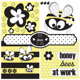 Miodowy pszczoły i kwiatu wektor Obrazy Stock