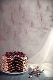 Miodowy warstwa tort z wiśniami i mascarpone śmietanką zdjęcia royalty free
