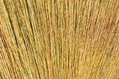 Miotła robić trawa Obrazy Stock