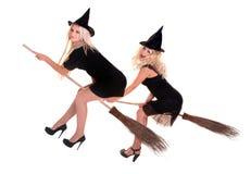 miotły komarnicy grupy Halloween kapeluszu czarownica Zdjęcie Royalty Free