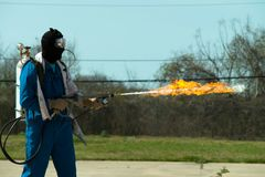 Miotacz ognia w akci Miotacza ognia operacyjny test obraz stock