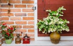 Miotacz z kwiatami Obrazy Stock