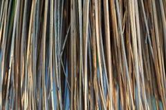 Mioteł Broomsticks zbliżenie Zdjęcia Royalty Free