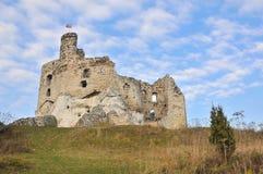 Mirów castle stock photo