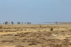 Miraż w przylądka verde pustyni obrazy royalty free