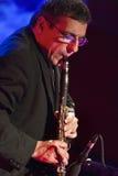 Mirabassi en concierto Imágenes de archivo libres de regalías