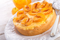 Mirabelle cake Royalty Free Stock Photos