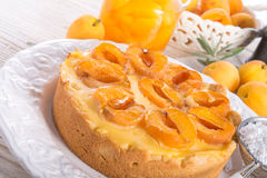 Mirabelle cake Stock Photos