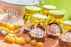 Mirabelle Chutneys Royalty Free Stock Photo