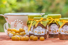 Mirabelle Chutneys Stock Photos