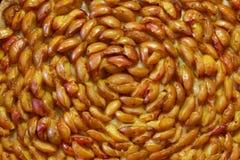 Mirabelle Pie com massa de fermento - macro Imagem de Stock Royalty Free