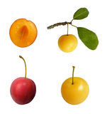 Mirabelle plum isolated Stock Photography