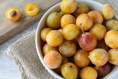 Mirabelle plums Stock Images