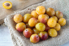 Mirabelle plums Royalty Free Stock Photo