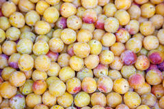 Mirabelle plums. Close up of mirabelle plums Stock Image