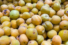 Mirabelle plums Royalty Free Stock Images