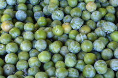 Mirabelle prune at the market Stock Photography