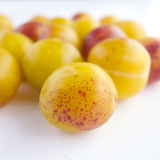 Mirabelle prunes Stock Images