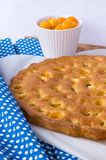 Mirabelle sponge cake Royalty Free Stock Images
