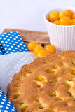 Mirabelle sponge cake Royalty Free Stock Photos