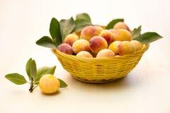 Mirabellenpflaume Frische Beeren in einem kleinen gelben Korb lizenzfreie stockfotos
