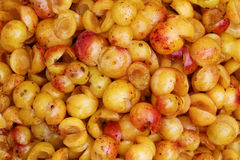 Mirabelles - Freshly Cored. Closeup of freshly cored mirabelles, partly showing their natural white wax film stock photos