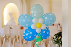 Miracle Balloons Stock Images