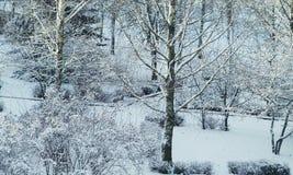 miracle d'hiver Image libre de droits