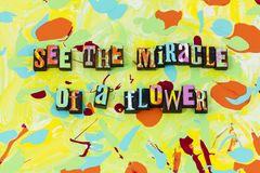 Miracle flower nature natural purity believe beautiful. Expect miracles magic beauty joy hope love kindness be kind enjoy life love royalty free illustration