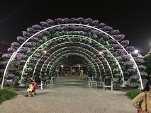 Miracle Garden royalty free stock photo