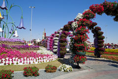 Miracle Garden ,Dubai Royalty Free Stock Photography