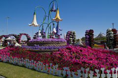 Miracle Garden ,Dubai Royalty Free Stock Photo