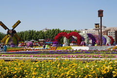 Miracle Garden ,Dubai Royalty Free Stock Image