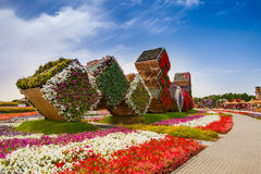 Miracle garden Stock Images