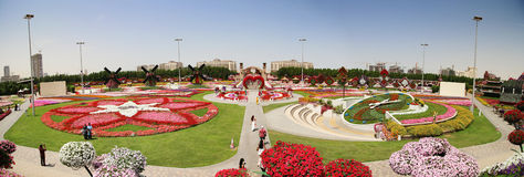 Miracle garden. DUBAI, UAE - MARCH 28: Panorama view oin Dubai Miracle Garden in the UAE on March 28, 2015. It has over 45 million flowers stock image