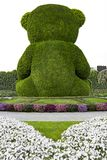 Miracle Garden, Dubai - Green Bear stock photo