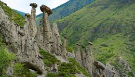 Miracle Stone Mushrooms Montage, Panorama of the big size. Altai, Russia royalty free stock image
